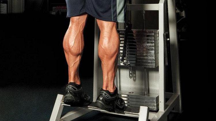 накачка мышц голени